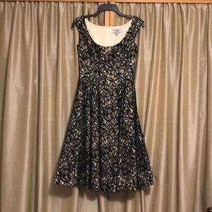 Mirror of Venus black lace dress